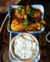 gallery/chicken curry